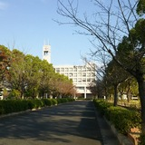 image_jpg